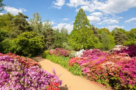이자벨 농장 리치몬드 공원, 런던