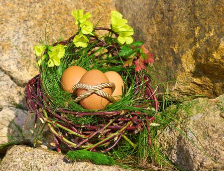 moos: Easter Eggs on a rock