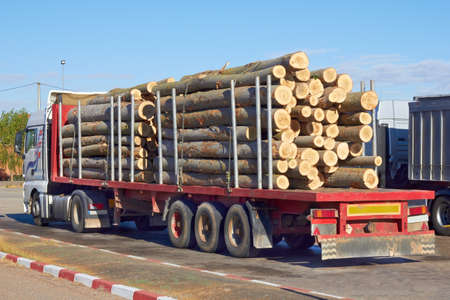 The loaded truck with logs  photo