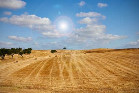 haycock: wheat haystack landscape, blue sky and sun Stock Photo