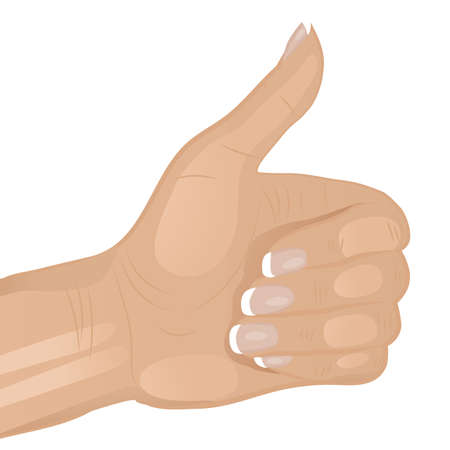 french manicure: Illustration of a woman s hand doing a thumbs up
