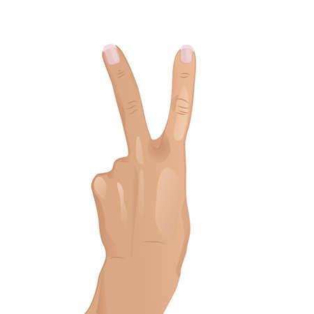An illustration of hand doing V Stock Vector - 18419652