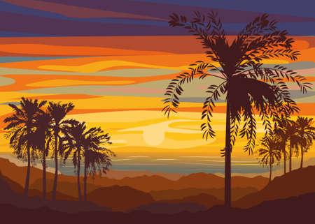 effect sunset: Sunset  Setting sun over the desert