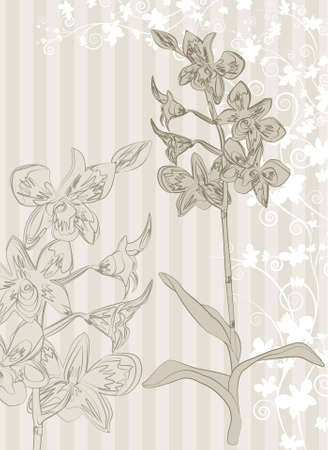 feng shui: Orchid background