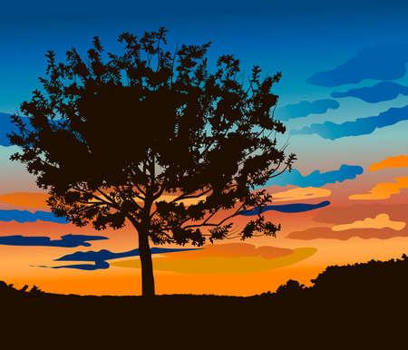 tranquil scene on urban scene: Tree against sunset Illustration
