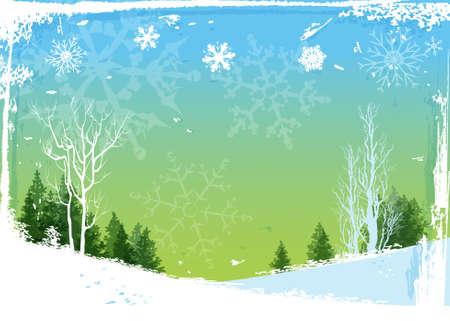 winter forest: Winter forest background Illustration