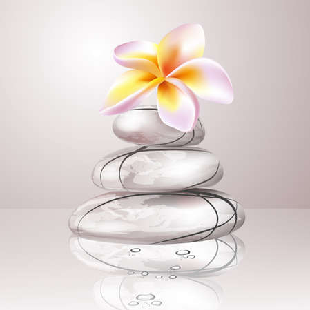 Spa zen stones and frangipani flowers Vector