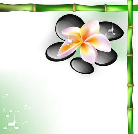 Background with spa stones and frangipani flower Vector