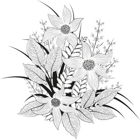 Decorative black and white floral background  Vector