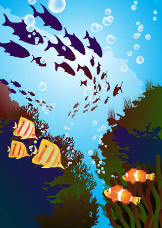 underwater world, coral reefs and colored fishes Vector