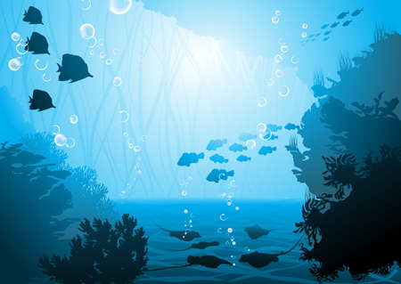 underwater world, oceanic fishes  Vector