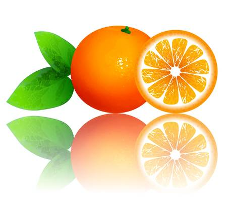 photo realism: fresh ripe oranges with leaves