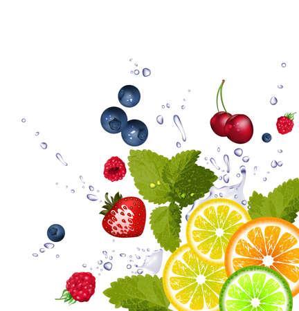 Fruit and splash of water Vector