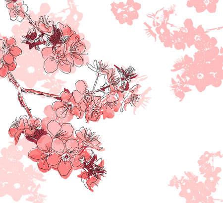 cerezos en flor: Fondo floral retro con una flor de sakura Vectores