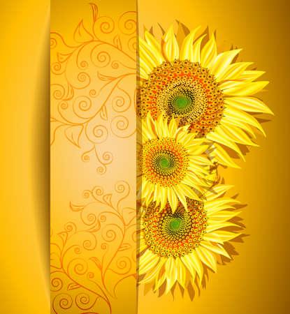 Kort zonnebloemen achtergrond, Vector illustratie