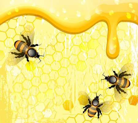 Bees on honeycomb, vector illustration