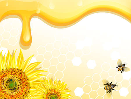 honey bee: Sunflowers and bees on honey background