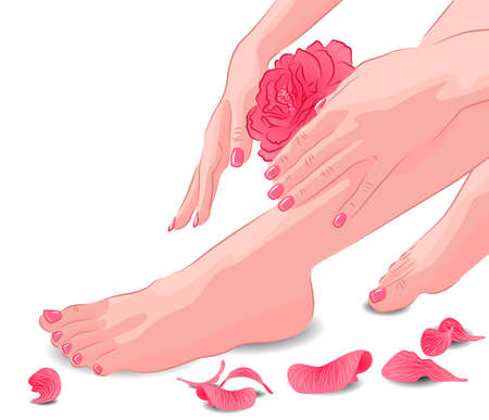 Female feet and hands with pink rose and petals  矢量图像