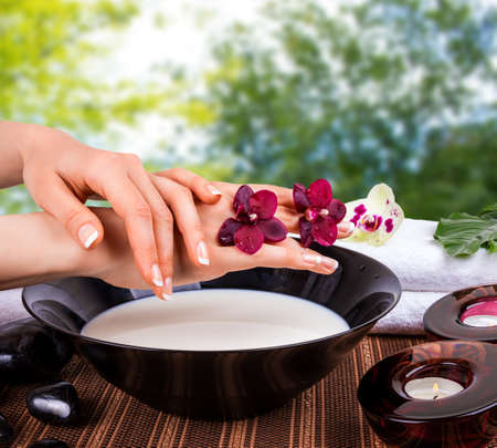hands with orchids and bowl of milk  photo