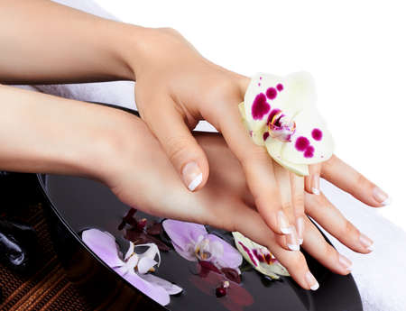 Woman s hands with orchids and bowl photo