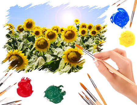 Hand with a brush painting summer landscape with sunflowers photo