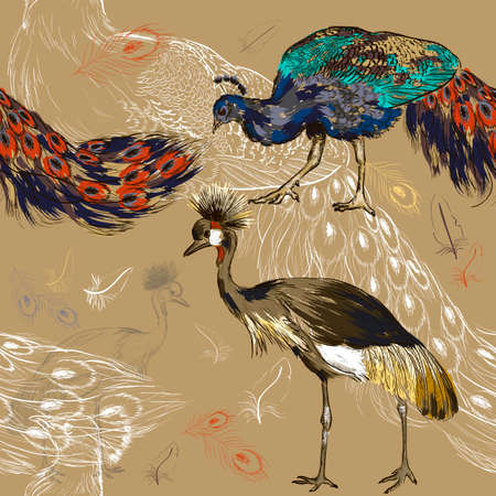 Seamless pattern with peacock and Crowned Crane Vector