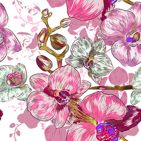 pink orchid: Seamless pink orchid Pattern