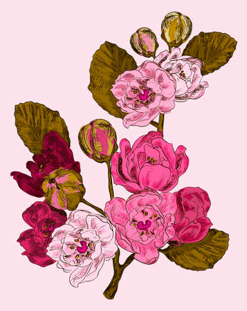 Branch of a pink flower