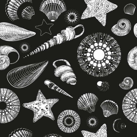 underwater fishes: Vector seamless pattern with seashells  black and white