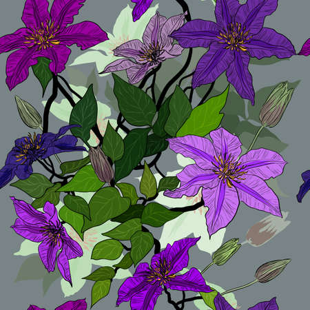 bower: Vector seamless pattern with clematis flowers