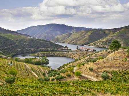 beautifu: Beautifu landscape in the Douro region, Portugal