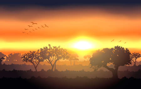 Sunset landscape vector: Vector hoàng hôn cảnh quan với hình bóng cây Hình minh hoạ
