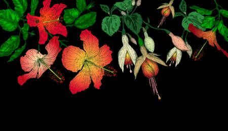flores fucsia: Hibiscus y flores fucsias fondo Foto de archivo