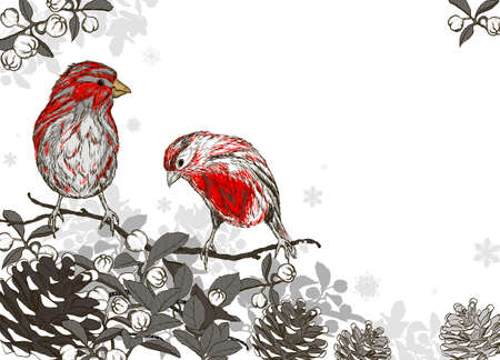 Christmas hand drawn background with winter birds Vector