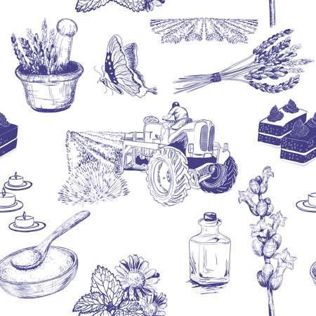 botanical drawing: Vector seamless pattern with lavender flowers set Illustration