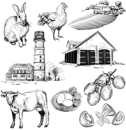 milker: Vector hand drawn collection of farm and agriculture pictures Illustration