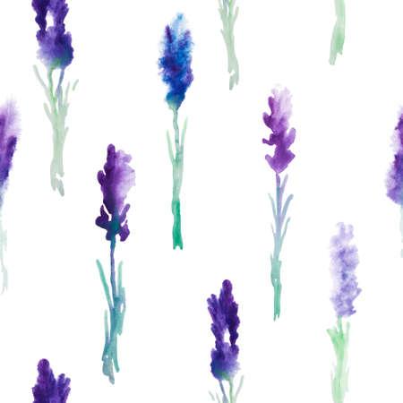 Vecteur modèle Aquarelle transparente avec les fleurs de lavande. Banque d'images - 38962918