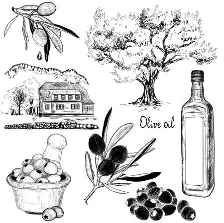black branch: Vector hand-drawn black and white set of olive products