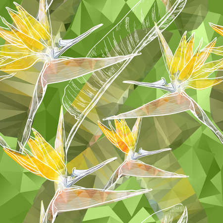 botanical gardens: Vector Seamless background with blooming Bird of Paradise flowers in triangles style Illustration