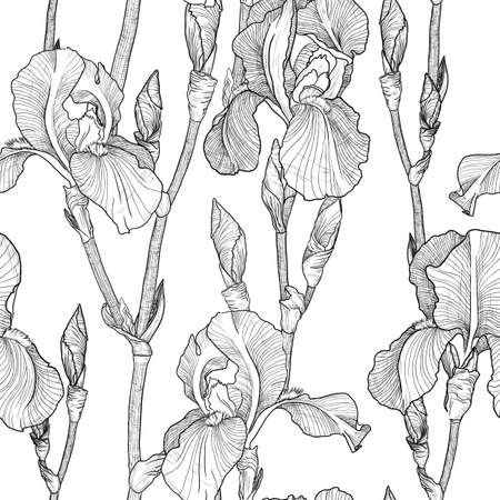 iris flower: Vector Seamless pattern with Beautiful iris flowers black and white