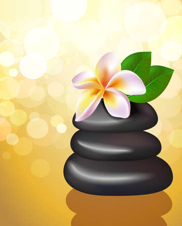 meditation stones: Spa illustration of stones with frangipani flower