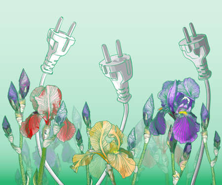 ides: Vector Green eco friendly background with blooming irises Illustration