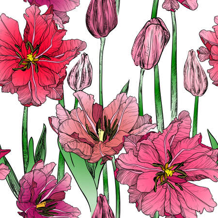 Vector seamless pattern with pink spring tulip flowers