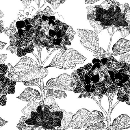 Beautiful vintage floral seamless pattern with hydrangea flowers on a background black and white