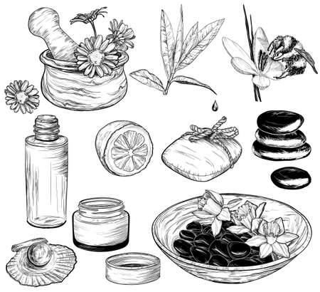 bottle of medicine: set of spa illustrations, Beauty and health care sketch, organic products