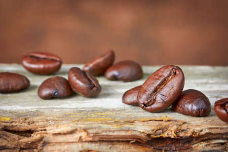 coffeetree: Coffee beans on old wood background. Close-up