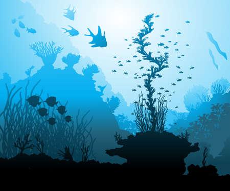 moray: Ocean underwater world with different animals