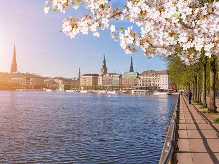 Embankment along the lake Lake, center of Hamburg in springtime Stock Photo