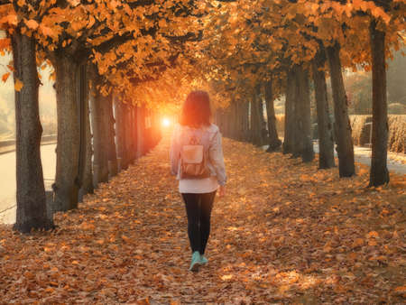 Walking woman in the autumn park, fall season Stockfoto