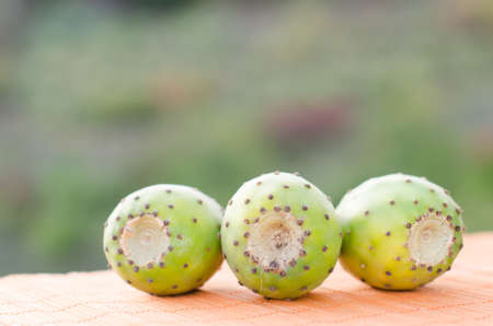 nutricion: A nice trio of white nopal